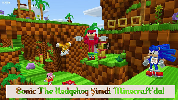 sonic minecraft OA
